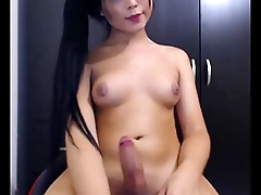 Gorgeous Asian Transsexual Masturbates Cam
